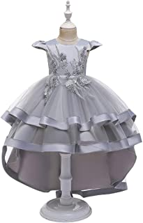 Luxury Princess Dress Children Dress Princess Skirt Big Girls Large Tail Wedding Dress Catwalk Models Flower Girl Dress Costumes Piano Bead Flower Embroidery Tutu ryq (Color : Grey, Size : 150cm)