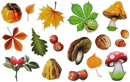 alles-meine.de GmbH 8 Stück: Fensterbilder Herbst - Blätter Pilze Kastanien und Herbstfrüchte - Sticker _ statisch haftend wiederverwendbar _ Fenstersticker Aufkleber selbstklebe..