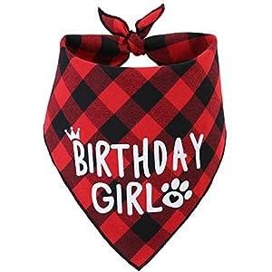JPB Dog Birthday Bandana Girl