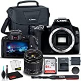 Canon EOS 250D DSLR Camera with 18-55mm Lens (Black) (3453C002) + Canon EOS Bag + Sandisk Ultra 64GB Card + Cleaning Set and More (International Model)