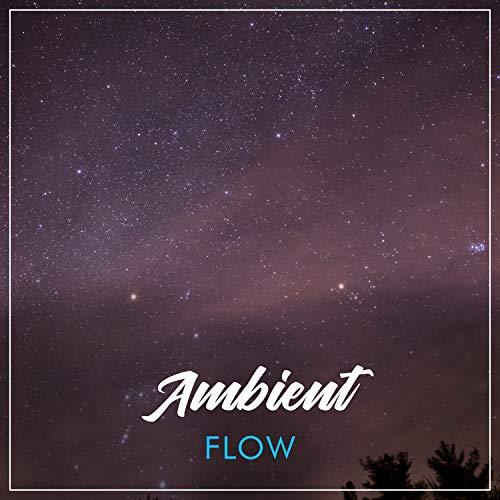 # Ambient Flow