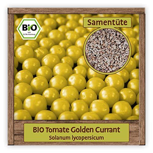 BIO Tomaten Samen Cherrytomaten Saatgut Gemüsesamen Sorte Golden Currant