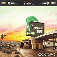 Community Inn - Orange Vinyl + Plectrum - Sealed