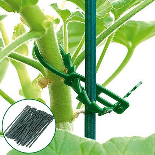 Quanjucheer 30 pcs 17 cm Plastique d'escalade support pour plantes Attaches de câble Green