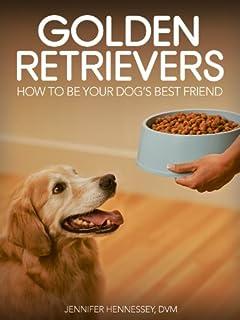 10 Mejor Golden Retriever Friends de 2020 – Mejor valorados y revisados