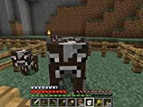 Clip: Cow and Sheep Farming