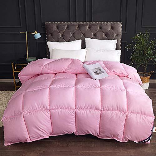 CHOU DAN Teddy Fleece Luxuriöse Bettdecke Ganzjahres-Bettdecke in voller Größe mit Ecken Weiche Bettdeckeneinsätze hypoallergen 220x240cm 4000g