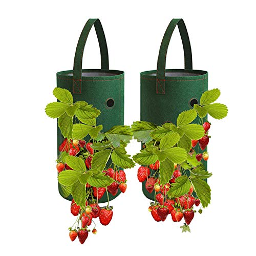 FOVERN1 Strawberry Grow Bags, 2 Pack 10 Gallon Gardens Hanging Strawberry Planter, Multifunction Vegetable Flower Strawberry Plant Grow Bags for Garden Strawberries, Herbs, Flowers (22 x 38cm)