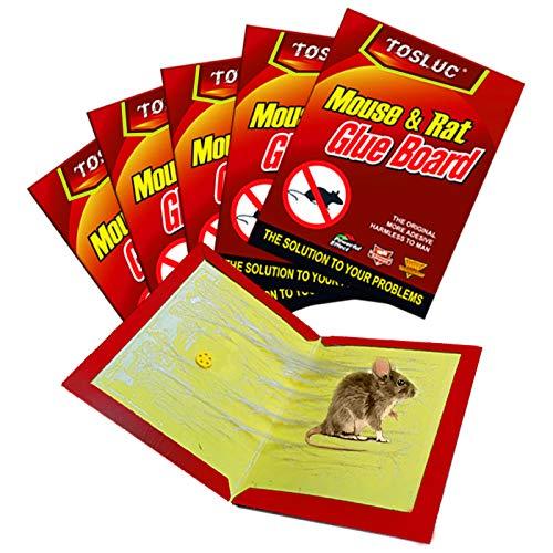 TOSLUC 2021 Trampa para ratones grandes, 5 trampas para ratones, pegamento adhesivo,...