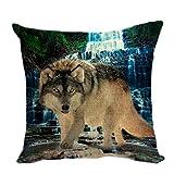 Pillow Cover Funda de cojín Deco para sofá, Funda de cojín, Fundas de Almohada, cojín,...
