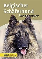 Belgischer Schaferhund Intelligenz Trifft Auf Loyalitat