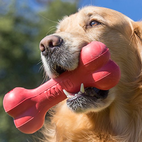 KONG - Goodie Boneª - Durable Rubber Chew Bone, Treat Dispensing Dog Toy - For Large Dogs