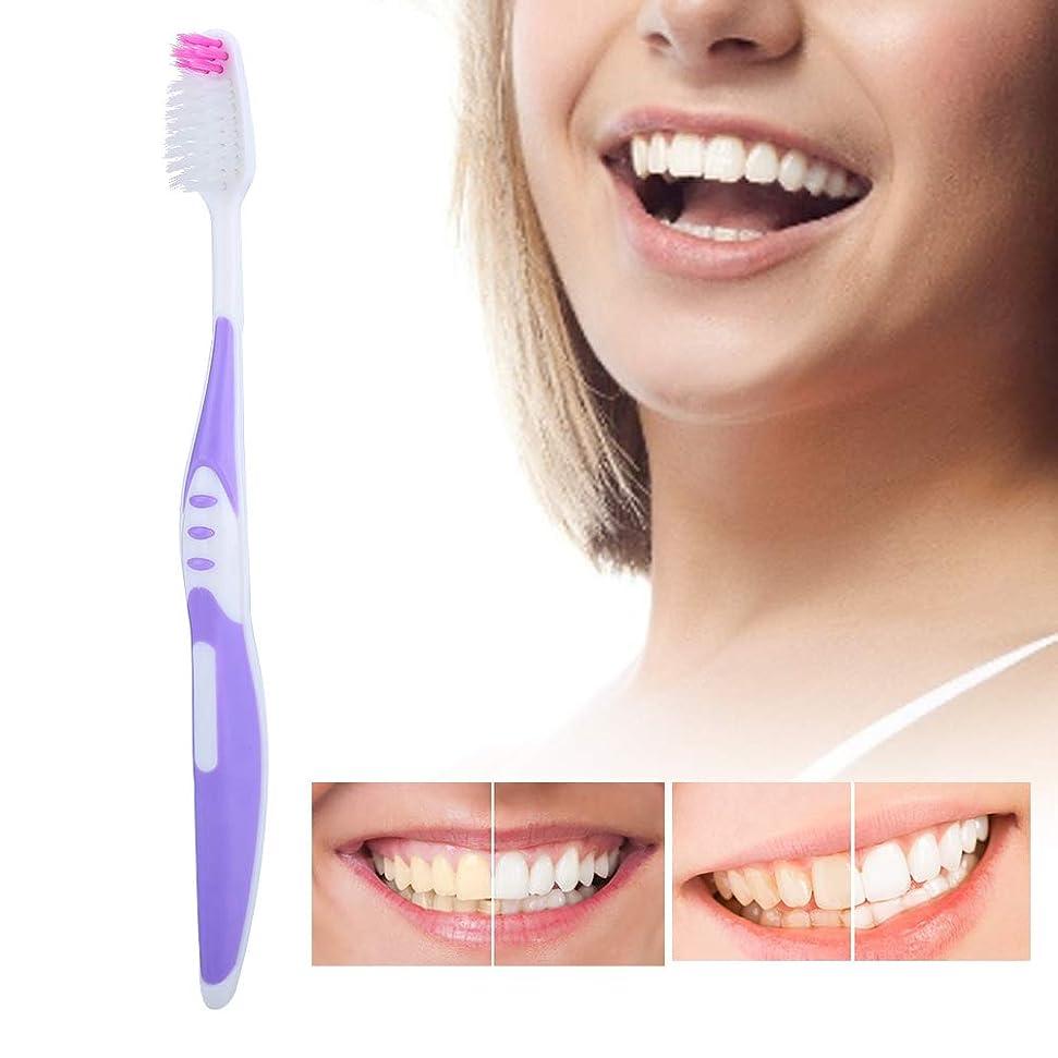 ワードローブ国民投票放射性ソフトブラシ髪の歯ブラシ10個入りpp滑り止めハンドル歯のクレンジングブラシ用大人パープル