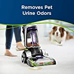 Bissell Professional Pet Urine Eliminator + Oxy Carpet Cleaning Formula, 48 oz, 1990 11 2X Concentrated formula for use in all Upright Carpet Cleaning Machines Removes pet stains and odors at the source with the power of Oxy and Febreze Freshness Formulated to penetrate and loosen set-in pet stains like urine, feces, blood and vomit