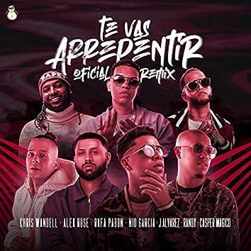 Te Vas Arrepentir (Remix)