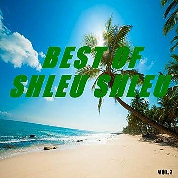 Best of shleu shleu (Vol.2)