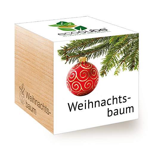 Feel Green Ecocube Weihnachtsbaum/Xmas Tree, Nachhaltige Geschenkidee (100% eco Friendly), Grow Your Own/Anzuchtset, Pflanzen Im Holzwürfel, Made in Austria