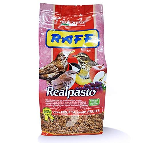 RAFF REALPASTO con Frutta 1 kg - per Uccelli INSETTIVORI E Maine
