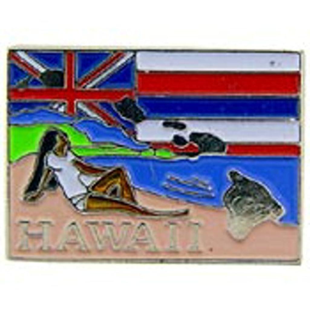 EagleEmblems P09212 PIN-Hawaii (MAP) (1'')