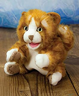 Gangway to Galilee Rusty the Cat Puppet