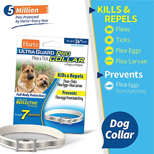 Hartz UltraGuard Dog Flea Collar