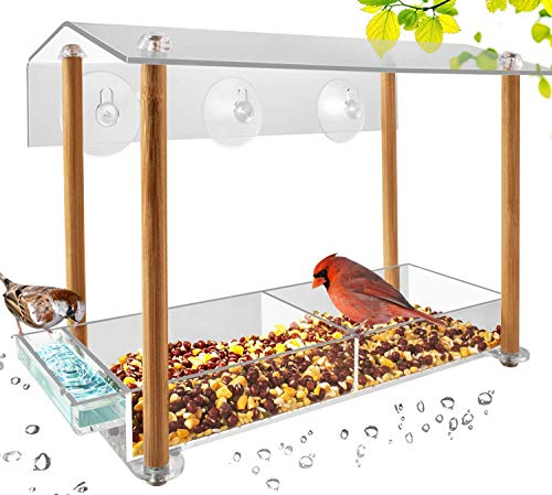 bird feeder for window