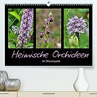 Heimische Orchideen im Dreierpack (Premium, hochwertiger DIN A2 Wandkalender 2022, Kunstdruck in Hochglanz): Zart, zierlich, zauberhaft (Monatskalender, 14 Seiten )
