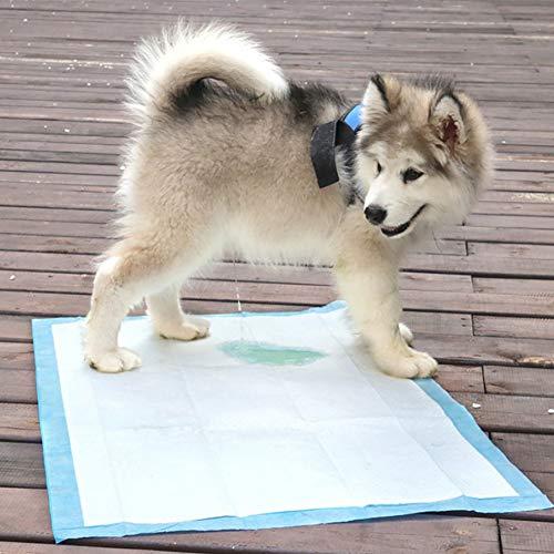 ZISITA Multi-Size Huisdier Luiers Super Absorbens Hond Training Luiers voor Honden Puppy Pee Pads Reinigen Huisdier Hond Onderpads