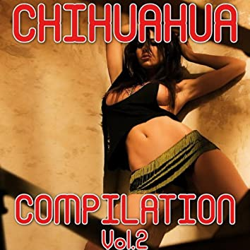 Chihuahua Compilation, Vol. 2