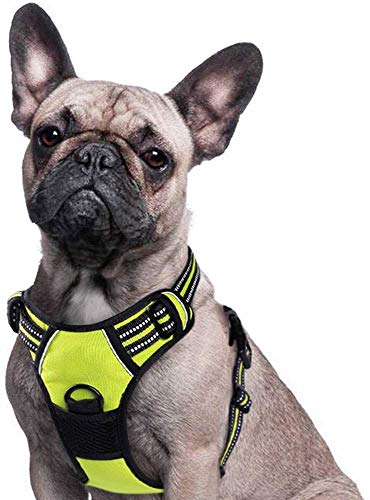Eagloo Dog Harness No Pull, Walking Pet Harness with 2 Metal Rings and Handle Adjustable Reflective Breathable Oxford Soft Vest Easy Control Front Clip Harness Outdoor for Medium Dogs Green