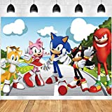 TUWUNA Sonic Banner Backdrop for Sonic Birthday Party Supplies Baby Shower Decorations Background Photograph