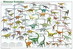 6. Poster Revolution Dinosaur Evolution Educational Science Chart Poster