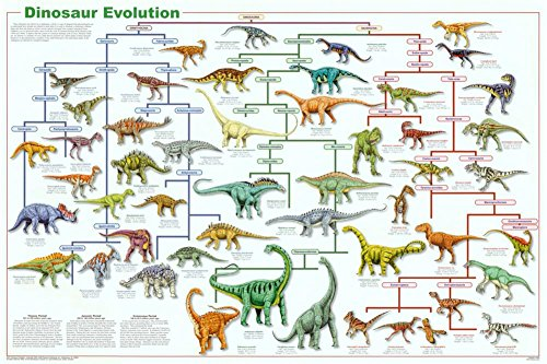Laminiert Dinosaurier Evolution Educational Wissenschaft Diagramm Poster 91,4 x 61 cm