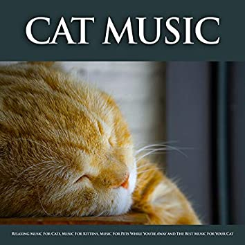 Cat Music: Relaxing Music For Cats, Music For Kittens, Music For Pets While You're Away and The Best Music For Your Cat