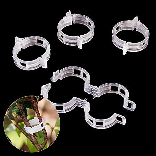 VSTAR66 200 clips de soporte para plantas de plástico, mini anillos de jardinería para tomate, rosa, peonía, orquídea en posición vertical