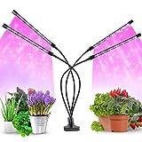 40W Lampada per Piante, Lampade da coltivazione indoor,80PCS LED Full Spectrum Plant Growing Lamp con Temporizador y 4 Cabezales y 9 Niveles de Atenuación Para Plántulas Crecimiento