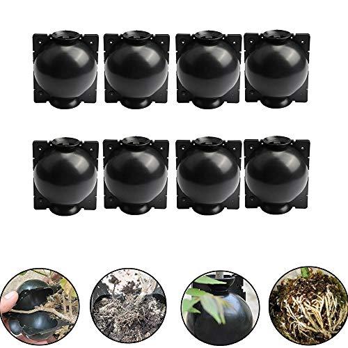 DRUN 8 pcs Plante Enracinement Dispositif Haute Pression Propagation Boule Haute Pression Boîte Greffage en Plastique pour Plante Enracinement Croissance Elevage (M, Noir)