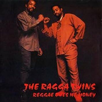 Reggae Owes Me Money