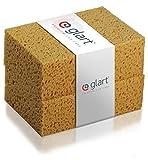 Glart 44WSN Pack de dos esponjas de lavado naturales, Amarillo, 18 x 12 x 6 cm, Set de 2