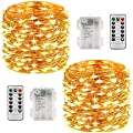 LED String Lights 33ft with 100 LEDs, Waterproof Decorative Lights with Remote for Indoor/Outdoor, Garden, Parties, Bedroom, Wedding (Copper Wire Lights, Warm White)