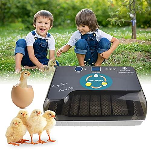 KKTECT Eier inkubator 12 Eier, Brutmaschine, Vollautomatisch Hühner Eier Brutgerät Temperaturregelung Automatisches Drehen, für Bauernhof, Heimgebrauch, Kinderpuzzle-Geschenk