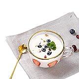 AXB Tazze da caffè in Vetro Trasparente, Tazze da Latte per Colazione Tazza da caffè Espresso Tazza da Yogurt con Manico per Bevande