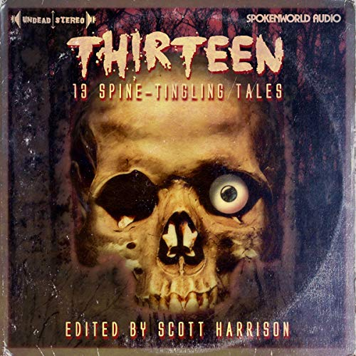 Page de couverture de Thirteen