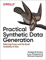 Practical Synthetic Data Generation Front Cover