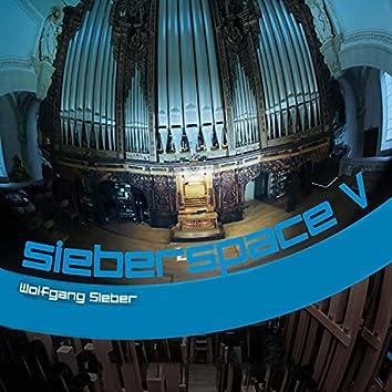 sieberspace V