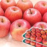 りんご 10kg箱 ふじ ご家庭用訳あり 青森 10キロ箱 林檎