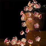 Iluminación de flores 2 m Cereza Iluminación Cuerdas Flor LED Cadena de Hada Lámpara para Interior Boda Rosa Campanas Garland Deco Iluminación al aire libre