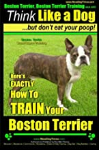 Boston Terrier, Boston Terrier Training AAA AKC: Think Like a Dog, But Don't Eat Your Poop!: Boston Terrier Breed Expert Training - Here's EXACTLY How to TRAIN Your Boston Terrier (Volume 2)