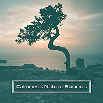 Calmness Nature Sounds – Music to Relax, Rest with New Age Sounds, Healing Waves, Soothing Wind Blows