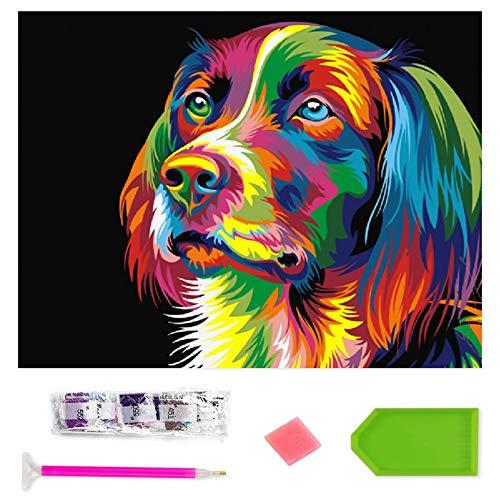 Rayber Juego de pintura de diamantes 5D para manualidades, para niños y adultos, artesanía con lápiz, pintura de diamantes para la pared y la entrada de la casa.